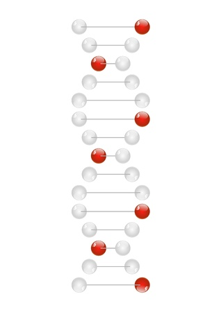 DNA molecule isolated on white Vector