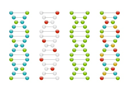 Set of glossy DNA molecules Stock Vector - 15467982