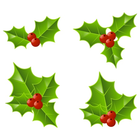 holly leaves: Set of Christmas holly icons
