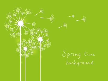 blowing dandelion: Spring background with dundelions on green