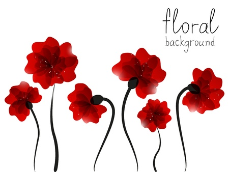 poppy flowers: Floral background with place for text