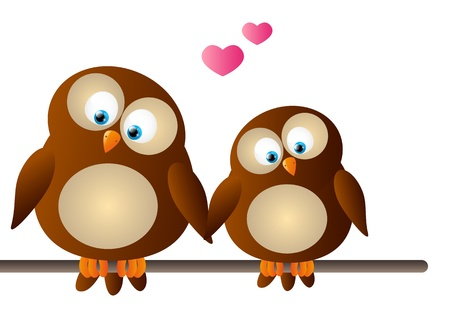 owl cartoon: Cute cartoon owls on white