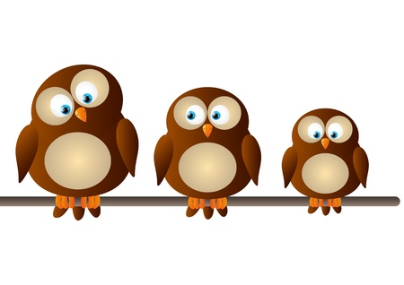 Cute cartoon owls on white photo