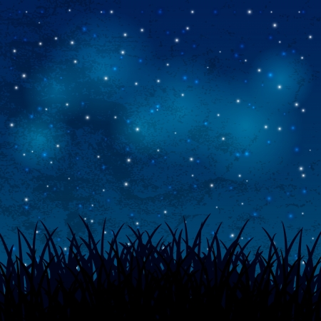 Night sky with shiny stars and grass