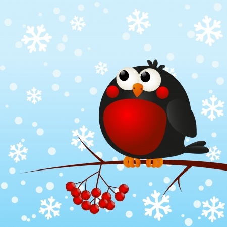 christmas robin: Cute bullfinch on a rowan branch Illustration