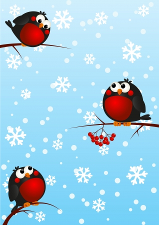 Funny bullfinches on rowan branches Vector