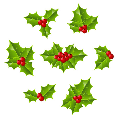 holly leaves: Set of Christmas holly leaves