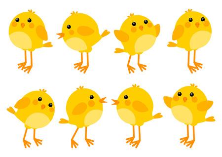 Conjunto de lindos pollitos Ilustración de vector