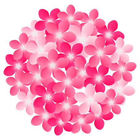 Pink flowers for Your design Vector