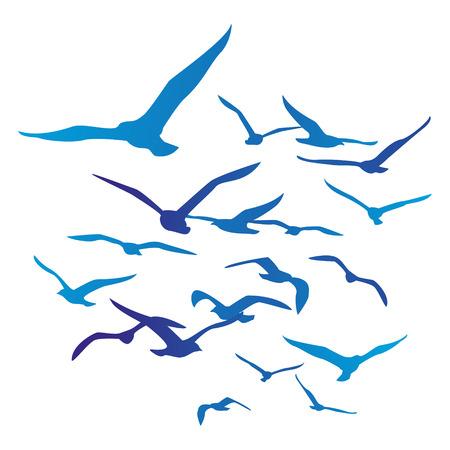 비행: 흰색에 고립 된 조류 실루엣