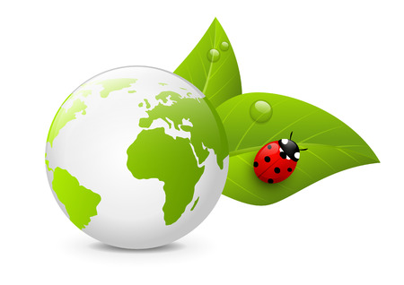 Earth globe with green leaves Vector
