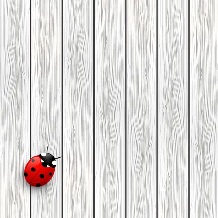 Wooden background with red ladybug Stock Vector - 26023926