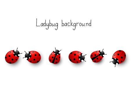 Lieveheersbeestje grens voor uw ontwerp Stock Illustratie