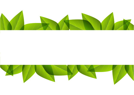 foliage  natural: Green leaves border for Your design