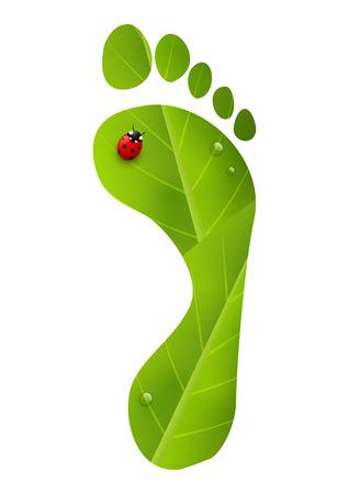 green footprint: Green foot print with ladybug
