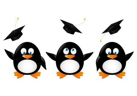 hat graduate: Student penguins isolated on white