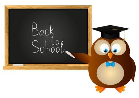 Funny owl with school blackboard Vector