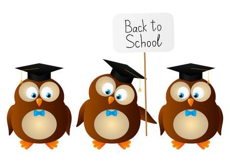 hat graduate: Funny student owls isolated on white