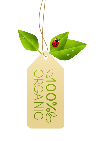 sales promotion: Ecology paper tag with green leaves