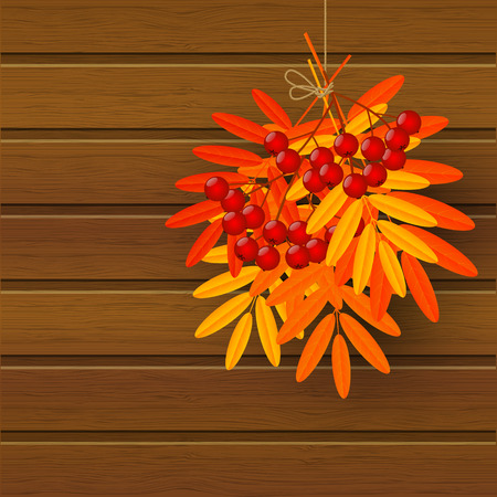 rowan: Autumn leaves with rowan on wooden background