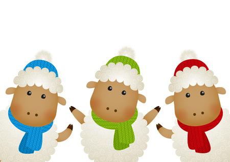 sheep wool: Cute little sheep on white Illustration