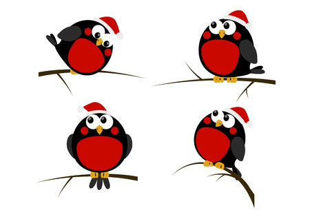 robin bird: Set of cartoon Christmas birds