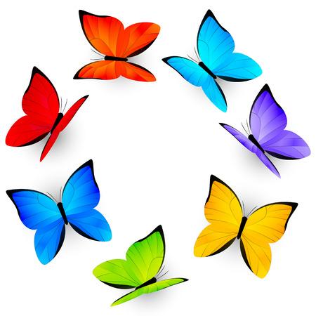 rainbow background: Rainbow butterflies on white background Illustration