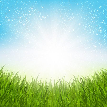 summer meadow: Sunny summer meadow for Your design Illustration