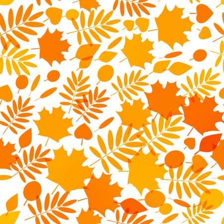 orange trees: Seamless pattern with autumn leaves