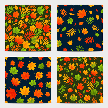 autumn color: Seamless patterns with color autumn leaves