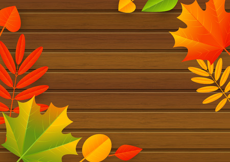 autumn leaves background: Autumn leaves on wooden background