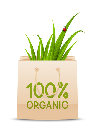 bugs shopping: Organic concept with shopping bag