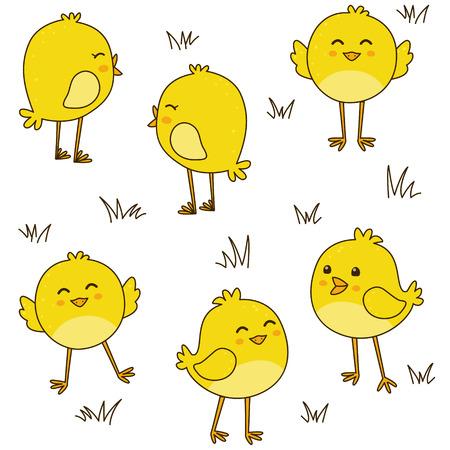 Jednolite wzór z cute kurcząt