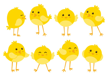cartoon easter: Set of cute cartoon chickens