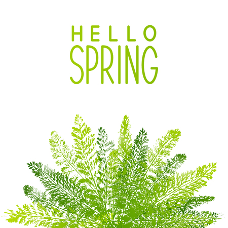 borders plants: Spring background with green leaves