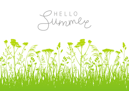 Green summer meadow with grass silhouettes Illustration