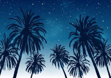 Fond de ciel de palmiers