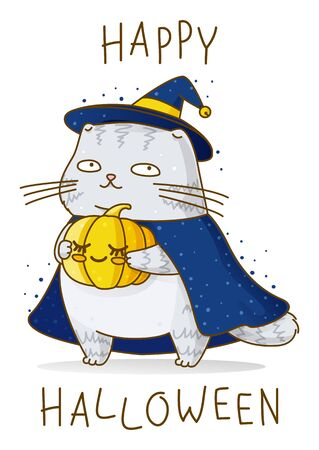 Cute scottish fold gray cat with pumpkin, witch hat and cloak isolated on white - character for magic halloween design