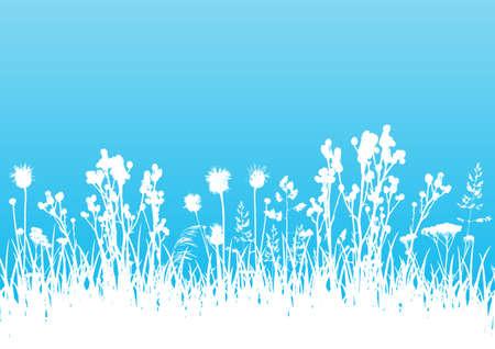 Wild herbs white silhouettes border on blue - vector background for natural summer design Ilustração