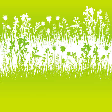 Wild herbs white silhouettes borders on green - vector background for natural summer design