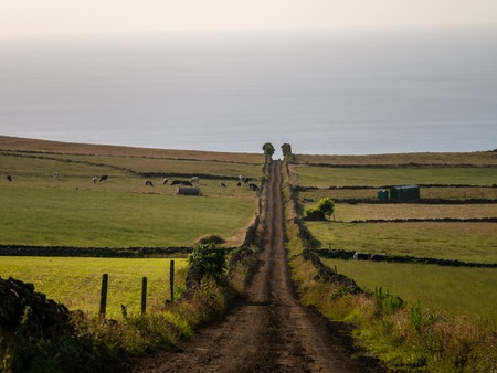 a track across the fields leading to a vanishing point in the image center on the island of Azores Portugal Europe