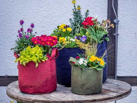 Image of creative flowers decoration in the garden during day time