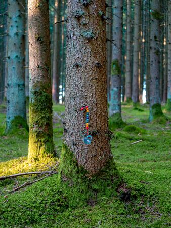 Pacifier on colorful chain fixed at the bark of a tree in a forsest