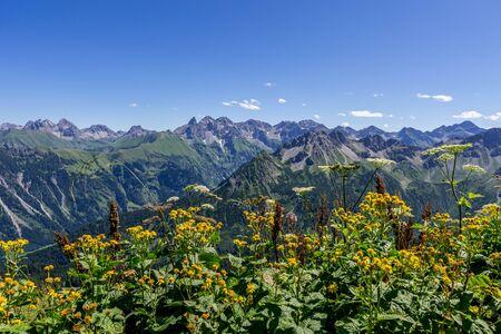 Green mountain landscapes at Fellhorn in Allgaeu Banque d'images - 129369188