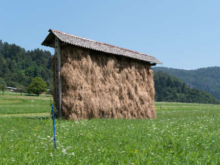 Traditional Slovenian hay rack, construction for drying grass on old wooden scaffolding near Bled, Slovenia in the summer time