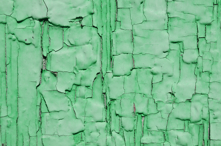 crack: Texture of green paint was polushilos on painted wood