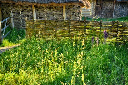Wicker wooden sheds and an old fence among the greenery, among the foreskin and thin flowers in the sunlight. Nobody
