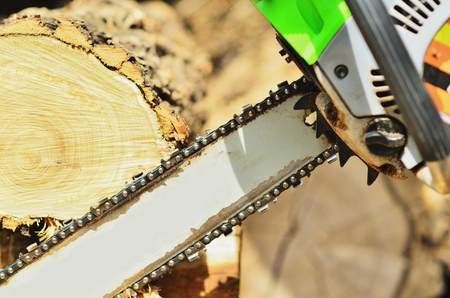Chainsaw saws wood in sunlight, close-up photo Stock Photo