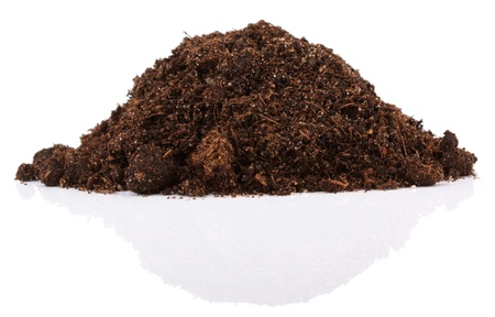 dirt background: Pile of soil for plant isolated on white background