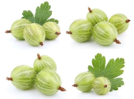grosella: Conjunto de frutas de grosella verde aislado en blanco Foto de archivo